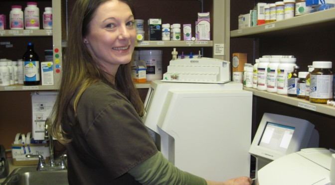 Next Project: Pharmacy